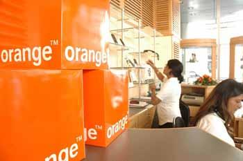 orange-3139
